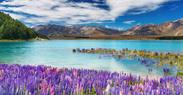 Qas Holidays Nieuw Zeeland Excursies Zuidereiland