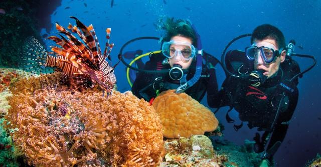 Qas holidays reizen vliegtarieven australie nieuw zeeland afrika pacific campers - Pro dive cairns ...